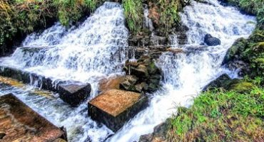 Cascades Spring – a karst spring in the Arney Catchment